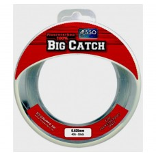 Asso Big Catch (fluorocarbon)